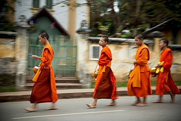 Buddhist Monks during Alms giving ceremony (Tak Bat), Luang Prabang, Laos, Indochina, Southeast Asia, Asia