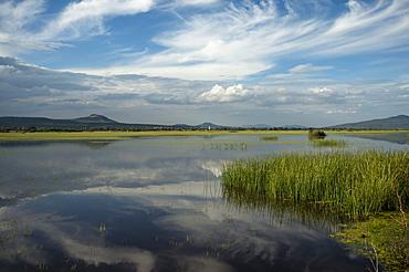 Lake Cuitzeo, Michoacan, Mexico, North America