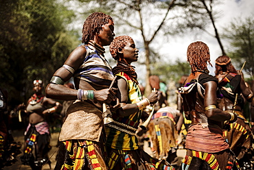 Jumping of the Bulls Ceremony, Hamar Tribe, Turmi, Omo Valley, Ethiopia, Africa