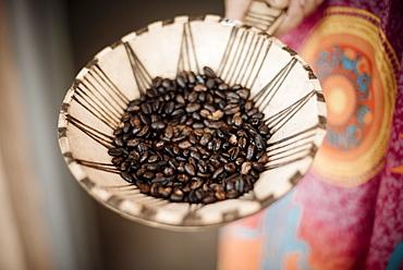Coffee beans, Omo Valley, Ethiopia, Africa