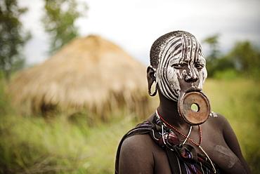 Portrait of Nangone, Mursi Tribe, Minisha Village, Omo Valley, Ethiopia, Africa