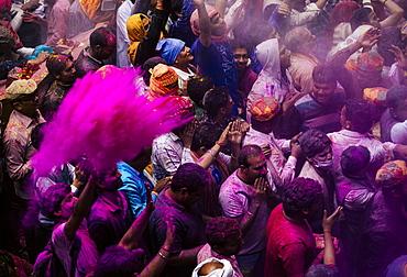 Lathmar Holi celebrations in Bankei Bihari Temple, Vrindavan, Braj, Uttar Pradesh, India, Asia
