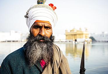 Portrait of Nihang Sikh man, Harmandir Sahib (Golden Temple), Amritsar, Punjab, India, Asia