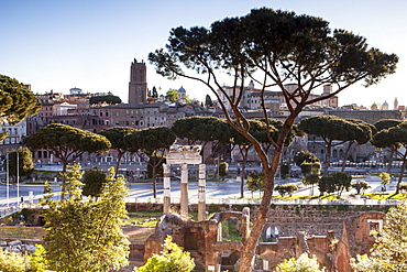 Part of the Imperial Forum (Foro Imperiali), Rome, Lazio, Italy, Europe