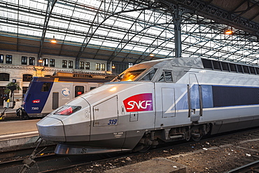A TGV and a local TER train await departure at Tours station, Indre et Loire, France, Europe