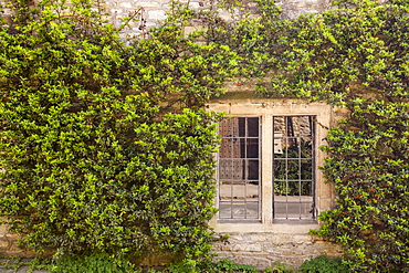 An old house and window is surrounded by the colours of spring in the village of Castle Combe, Wiltshire, England, United Kingdom, Europe