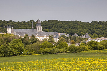 Looking towards the abbey of Fontevraud, Loire Valley, France, Europe
