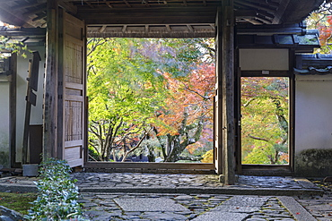 Autumn color in Anraku-ji temple in Kyoto, Japan, Asia