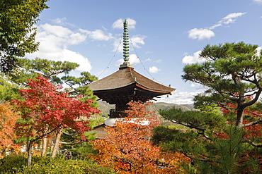 Autumn color in Jojakko-ji Temple in Arashiyama, Kyoto, Japan, Asia