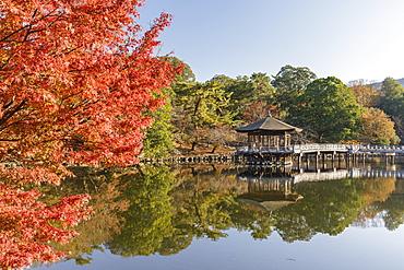 Autumn color around Ukimido Pavilion on the Sagiike Pond, Nara Park, Nara, Japan, Asia