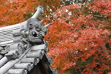 Autumn color around Todaiji Hokkedo in Nara, Japan, Asia
