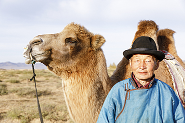 A camel herder in Mongolia, Central Asia, Asia