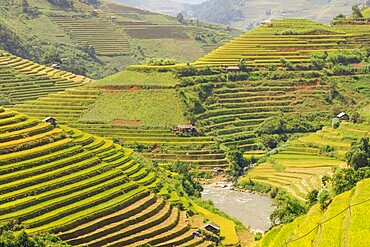 Rice terraces in Mu Cang Chai, Vietnam, Indochina, Southeast Asia, Asia