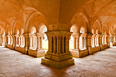 The cloisters of Fontenay Abbey, UNESCO World Heritage Site, Cote d'Or, Burgundy, France, Europe