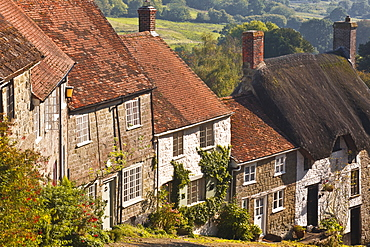 The famous cobbled street of Gold Hill in Shaftesbury, Dorset, England, United Kingdom, Europe