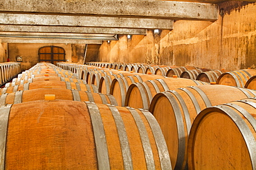 The wooden wine barrels used to age the wine at Gitton Pere et Fils in Sancerre, Cher, Centre, France, Europe