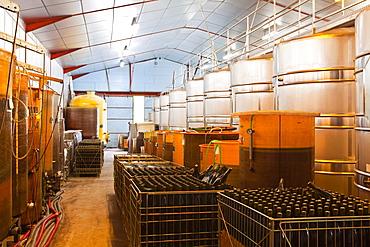 Wine vats and bottles at Gitton Pere et Fils in Sancerre, Cher, Centre, France, Europe