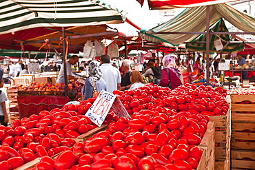 Tomatoes on sale at the open air market of Piazza della Repubblica, Turin, Piedmont, Italy, Europe