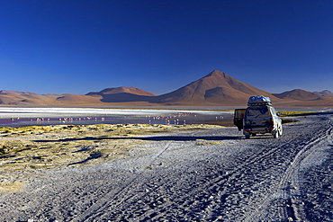 Laguna Colorada (Red Lagoon), a shallow salt lake in the southwest of the altiplano, within Eduardo Avaroa Andean Fauna National Reserve, Bolivia, South America