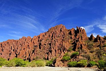 Canon Del Inca, Tupiza Chichas Range, Andes, Southwestern Bolivia, South America