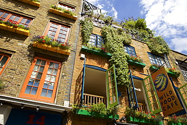Neals Yard in Covent Garden, London, England, United Kingdom, Europe