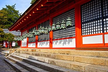 Bronze lanterns at Kasuga Grand shrine (Kasuga-taisha), UNESCO World Heritage Site, Nara Park, Honshu, Japan, Asia