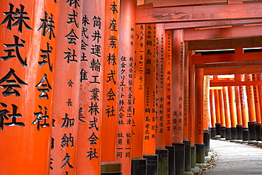 Prayers written in Japanese on the red wooden Torii Gates at Fushimi Inari Shrine, Kyoto, Japan, Asia