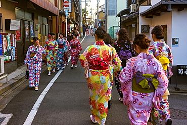 Groups of Japanese women wearing kimonos in Kyoto, Japan, Asia