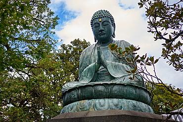 Bronze Buddha at Tennoji Temple, Yanaka, Tokyo, Japan, Asia