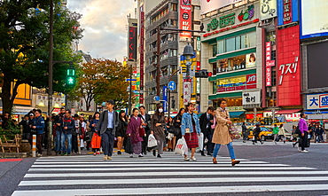Crowds crossing the road at the Shibuya Crossing, Tokyo, Japan, Asia