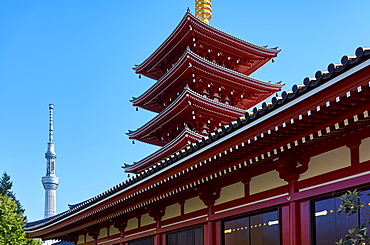 Sensoji Temple Pagoda (Asakusa Kannon Temple), the oldest temple in Tokyo with the Sky Tree Tower in the background, Tokyo, Japan, Asia