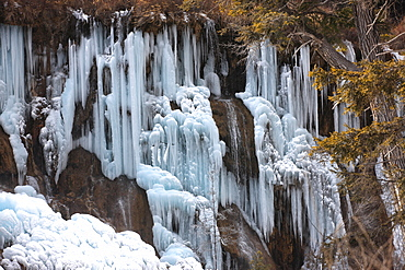 Nuorilang waterfall at Jiuzhaigou valleyNational Park, Sichuan Province, China. Jiuzhaigou (Nine-Village Gully) is a scenic spot in the northern part of Sichuan Province, China