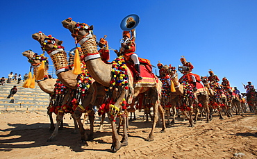 Camel Tattoo show during the Desert Festival, Jaisalmer, India