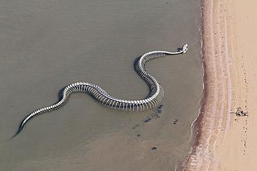 The 'Snake ocean', France Loire Estuary