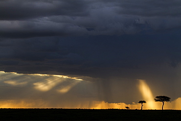 Kenya, Masai-Mara game reserve, clouds at sunset