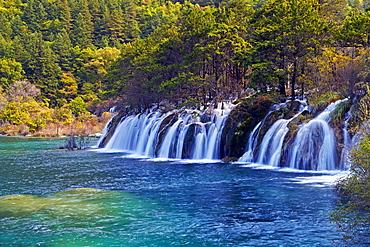 Waterfall,Shuzheng Falls, Jiuzhaigou valley, Sichuan, China