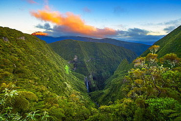 Waterfall in the Trou de Fer, Piton des Neiges Massif, Reunion Island