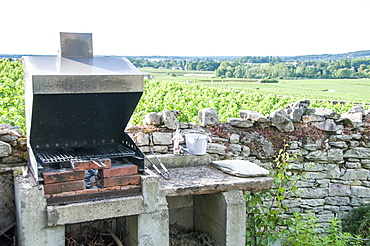 Barbecue in garden with view on the vineyard, Summer, Bourgogne, France