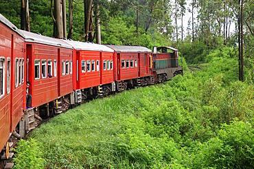 Train crossing the tea plantations, Sri Lanka