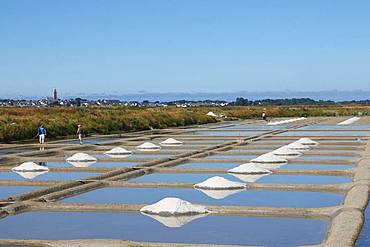 Salt marshes in full production, storage along the marsh, Guerande, Loire Atlantique, France