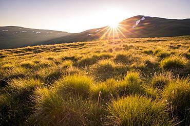 Sunset on the Emparis plateau, La Grave, Ecrins National Park, Hautes-Alpes, France