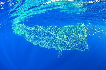 A floating, abandoned net in the ocean, Dominica, Caribbean Sea, Atlantic Ocean.
