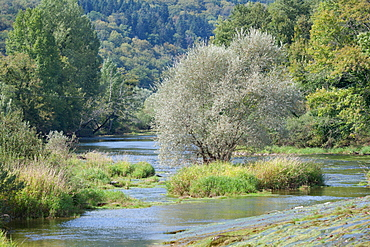 Loue river, Franche-Comté, France