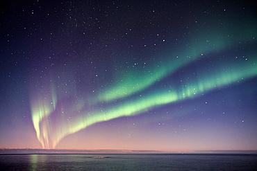 Aurora Borealis, Barents Sea, Varanger Peninsula, Finnmark, Norway