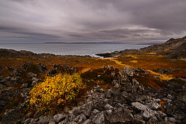 Landscape of the Varanger Peninsula, Finnmark, Norway