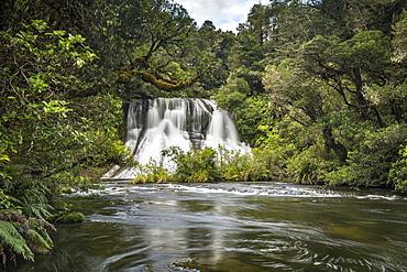Aniwaniwa Falls, Te Urewera National Park, North Island, New Zealand