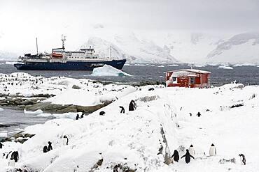 Plancius cruise ship Petermann Island, Antarctica.