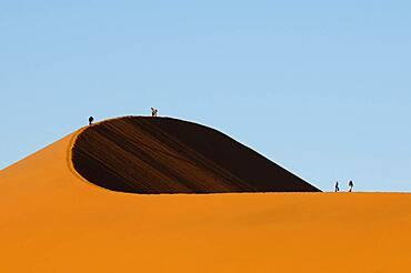 Dune 45, Sossusvlei, Namib Naukluft Park, Namib Desert, Namibia.