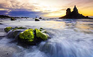 Sunset in Benijo beach, Green algaes on the stones. Beach of Benijo at sunset in spring, Anaga, Tenerife, Santa Cruz, Spain