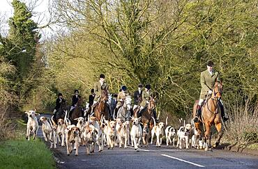 Bicester hunt trail hunting, Oxfordshire, England